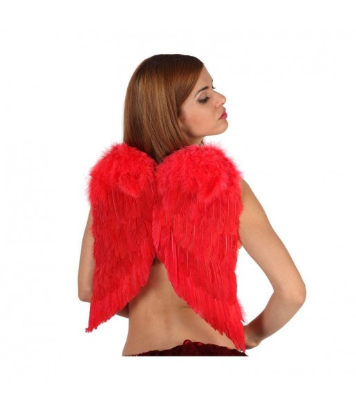 Alas de plumas rojas
