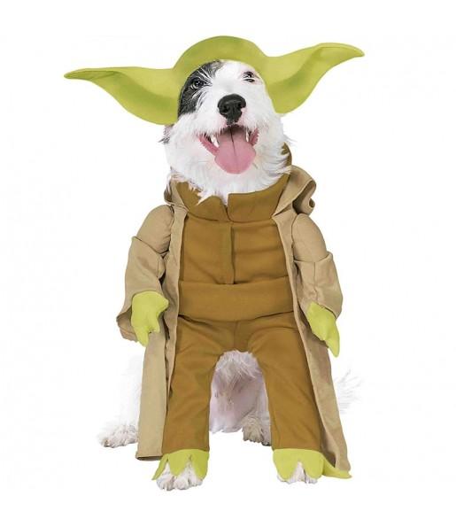 Disfraz de Yoda Star Wars para perro