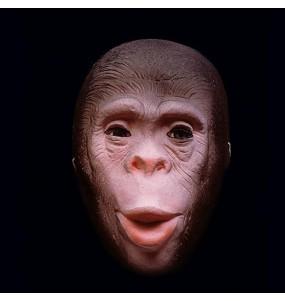 Careta mono