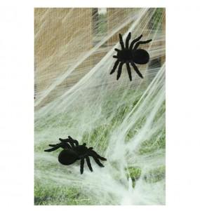 Blíster con 2 arañas