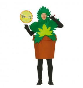 Disfraz de Planta de Marihuana