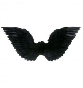 Alas plumas negras
