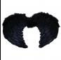 alas negras plumas
