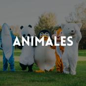 Catálogo de disfraces animales para niños, niñas, hombres y mujeres