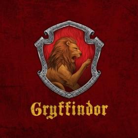 Merchandising Ravenclaw de Harry Potter