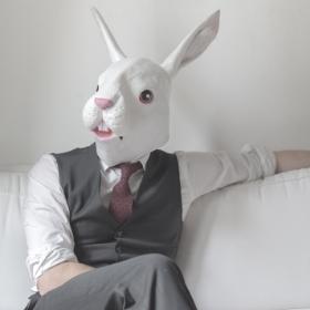 Máscaras de Animales para disfraz de Carnaval